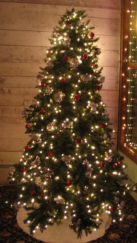 Pictures of Christmas Trees and Christmas Lights