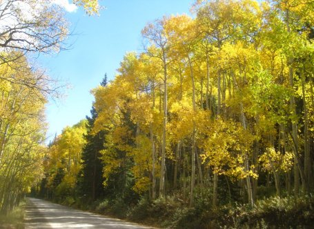 Chaffee County Road 162