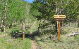 Davis Meadow Trailhead