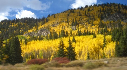 Colorado Fall Colors Season