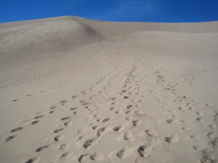 Great Sand Dunes Trail