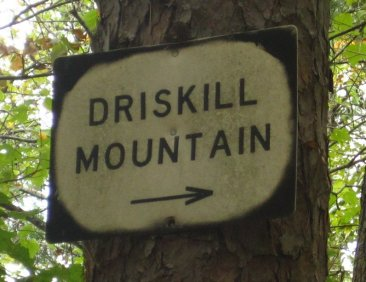 Driscoll Mountain, Louisiana