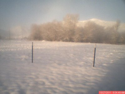 Snow Webcam