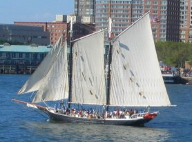 New York Sailboat